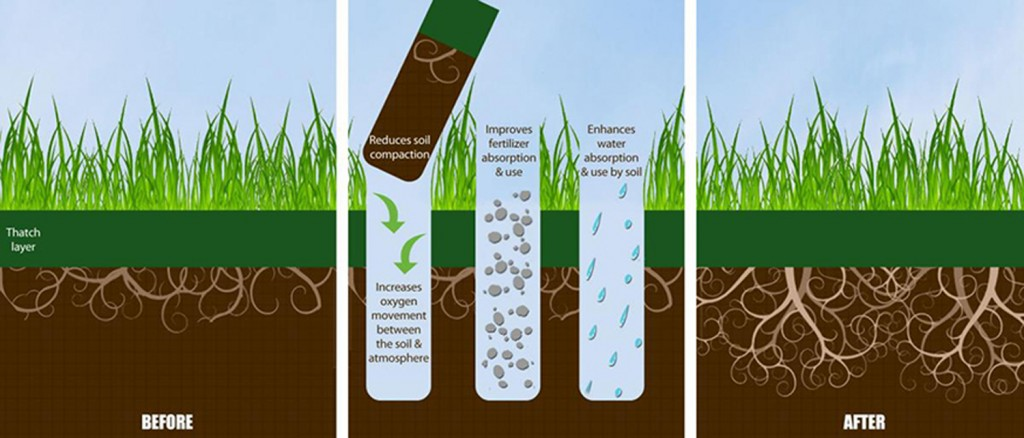 core aeration lawn benefits