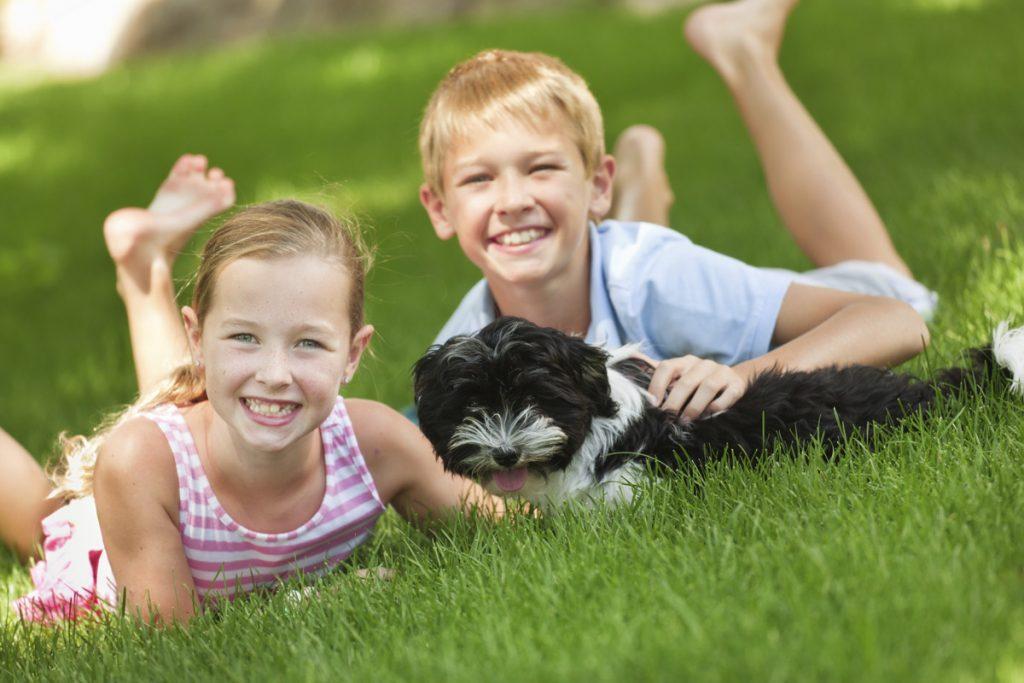 Children and Dog Playing in Beautiful Lawn